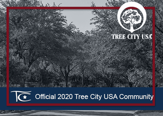 TC Tree City USA NF